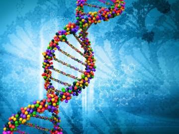 Genetics_jpg